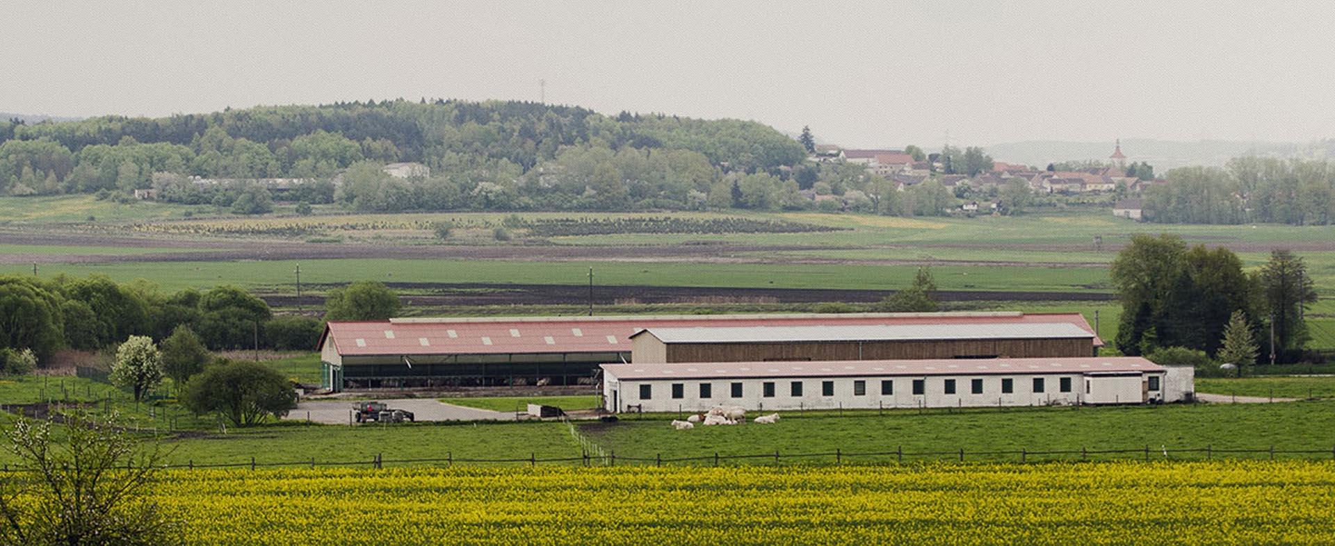 Ekologické zemědělství - Maletická farma